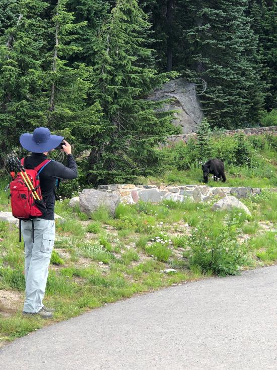 black bear with BIL