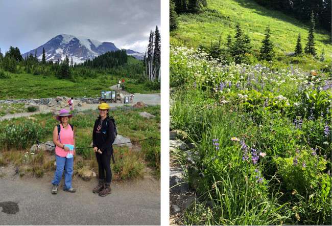 skyline trail entrance with sis and wildflowers