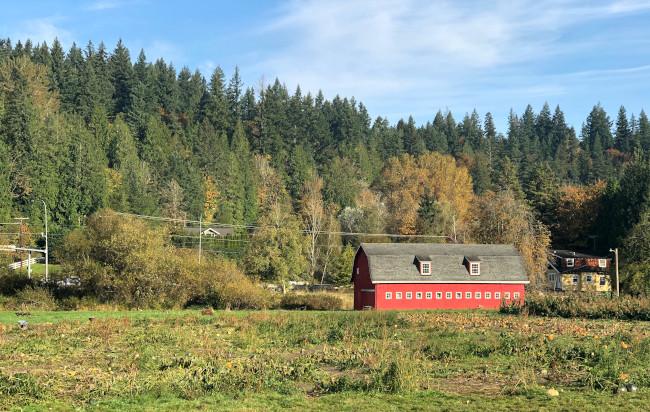 red barn in fall backdrop